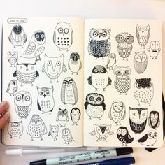 ...Day 13, owl                                                                                                                                                                                 More