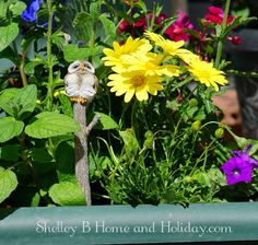 Shelley B Home and Holiday - Miniature Garden Sleepy Owl Tree Stump Stake, $13.00 (http://shelleybhomeandholiday.com/miniature-garden-sleepy-owl-tree-stump-stake/)