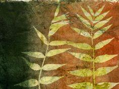 Secret Life of my Garden, monoprint