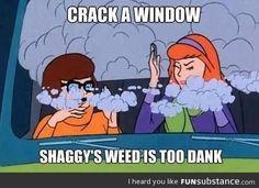 Shaggy's dank ass weed