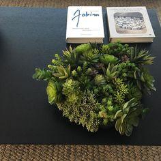 Fibras plantas e livros trio top na decoração tudo de lindo! Amo