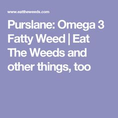 Purslane: Omega 3 Fatty Weed | Eat The Weeds and other things, too