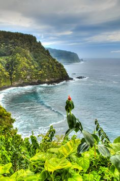 Aloha Hawaii, Hawaii Travel, Big Island Volcano, Maui Honeymoon, Hawaii Destinations, Road To Hana, Senior Trip, Places Of Interest, Hawaiian Islands