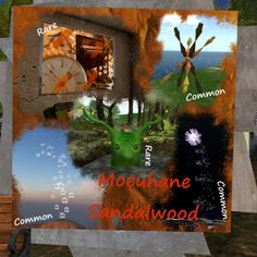 Moeuhane Sandalwood http://maps.secondlife.com/secondlife/Da%20Vinci%20Isle/109/88/33