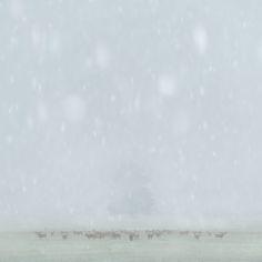 PHOTOS. Ces photographies de paysages ont été primées à un concours international