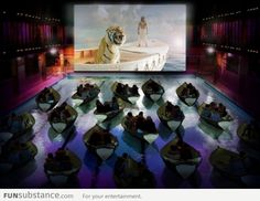 A swimming pool in Paris was recently transformed into a cinema for the new release of Ang Lee's Life of Pi. The special screenings let th. Dine In Theater, Movie Theater, Pi Art, Floating Boat, Life Of Pi, Outdoor Cinema, Messy Nessy Chic, West Side Story, Notting Hill
