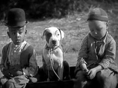 Petey: Pete the Pup, the son of Pal the Wonder Dog, took over the role of Petey, the canine mascot of the Our Gang/Little Rascals shorts after his father, Pal the Wonder Dog was poisoned in 1930. He appeared in many of the best-remembered shorts, though he was replaced with a series of younger dogs beginning in 1932. He lived to the ripe old age of 16. The trademark ring around his eye was makeup to match his dad's natural marking.