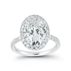Oval Engagement Ring - Platinum and Micro-Pave Setting by Marisa Perry