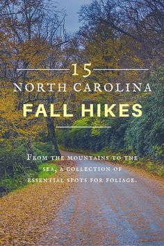 It\'s #fall, y\'all! Get your hikes in with great views, from the mountains to the coast.
