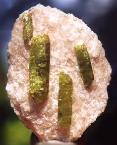 Green Apatite crystals on pink Calcite / Monmouth Township, Ontario, Canada Crystals Minerals, Rocks And Minerals, Mineralogy, Metal Detecting, Beautiful Rocks, Rocks And Gems, Gem Stones, Opals, Bright Green
