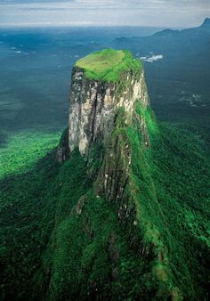 Cerro Autana, the tree of life, is a spectacular tepuy that is located in the Venezuelan state of Amazonas in Venezuela, near the Colombian border. It is part of Guiana. #babyanimal #cuteanimal