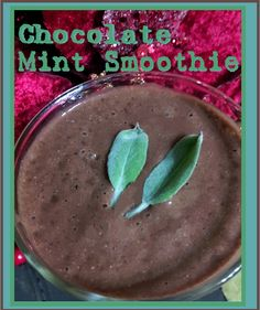 Silky Smooth Chocolate-Mint Smoothie (with sage leaf garnish b/c no other mints around) This chocolate-mint smoothie is the and. Vitamix Recipes, Smoothie Recipes, Vegan Recipes, Mint Smoothie, Smoothies, Mint Chocolate, Healthy Food, Food Ideas, Gluten Free
