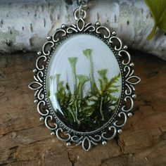 Forest moss pendant