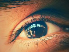 Our eyes are placed in front  Because its more important to look ahead than look back ....