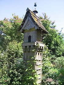 Amazing Birdhouse!