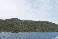 Reserva Biológica da Marinha do Arvoredo, 2006. Bombinhas (SC).
