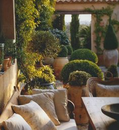 Courtyard garden inspiration... gravel, wood terracotta