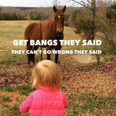 Horse bangs