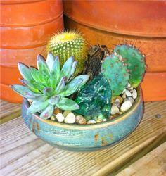Handmade Pottery Cactus Garden <3