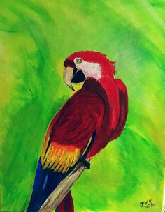 Clearance - Acrylic painting - Parrot