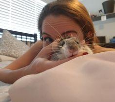 Quality rat time http://ift.tt/2qpPl6V