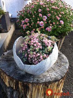 Concrete planter-balloon as mold. Cement Garden, Garden Paving, Garden Planters, Garden Art, Concrete Bowl, Concrete Art, Concrete Planters, Concrete Crafts, Concrete Projects