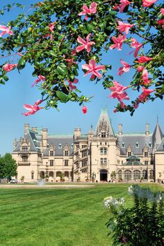 Biltmore House framed in summer garden blooms - Asheville, North Carolina. See our Insider's Guide: http://www.romanticasheville.com/biltmore_gardens.htm