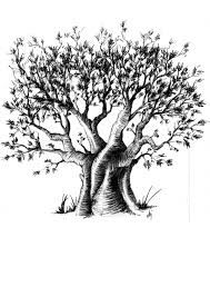 Image result for baobab tattoo