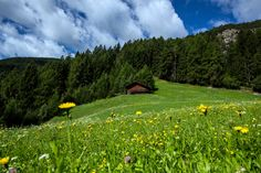In Italy, Hiking and Haute Cuisine in the Dolomites - The New York Times