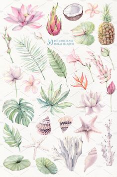 The aroma of tropical flowers and fruits, a light sea breeze and summer relax I share with you my expectations of summer:) I hope my illustrations will be Watercolor Wallpaper, Flower Wallpaper, Watercolor Background, Watercolor Texture, Watercolor Flowers, Watercolor Paintings, Watercolour Tutorials, Tropical Flowers, Botanical Prints