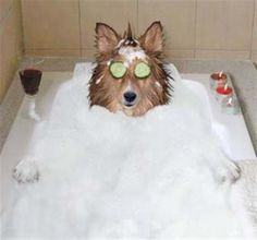 que banho bom