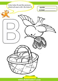 math worksheet : 1000 images about preschool letter b on pinterest  letter b  : B Worksheets For Kindergarten
