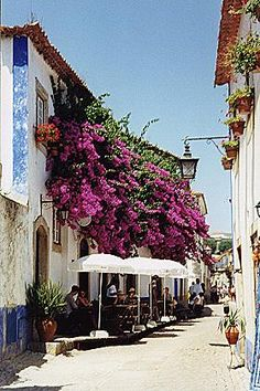 Obidos - small medieval village, within castle walls, hosts several festivals through the year including a chocolate festival. has handcraft-designer shops and also famous for a ginger liqueur (served in chocolate cups).