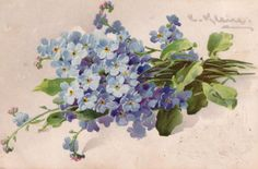 Flowers by Catharina KLEIN. Discussion on LiveInternet - Russian Service Online Diaries