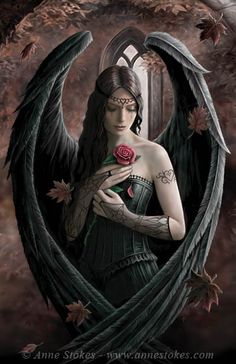 Angel_Rose_by Anne Stokes.jpg (383×591)
