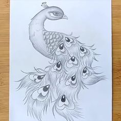 How to draw a Peacock - in easy steps Pencil Art - Pencil Sketch - step by step Easy Pencil Drawings, Girl Drawing Sketches, Art Drawings Sketches Simple, Girly Drawings, Pencil Sketch Art, Easy Dragon Drawings, Lion Drawing, Pencil Sketching, Horse Drawings