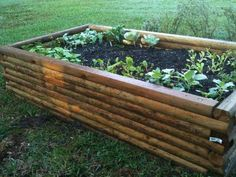 A link to a DIY page on how to build your own garden beds. I really wish I had DIY skills.