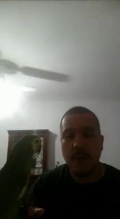 Vídeo - Google Fotos