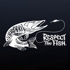 Muskie fishing window sticker. Professional grade outdoor vinyl decal. Over 40 fish designs available at respectthefish.com.