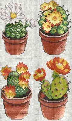 Схемы вышивки крестом 'Цветущие кактусы'- ProKrestik.ru