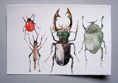 Watercolor painting of Insects. Art original. Watercolor art. Grey, red and black insects painted by watercolor. Small watercolor 7,5 by 11
