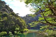 Parque Nacional Huerquehue en Pucón. Foto de Cristina Jara González.