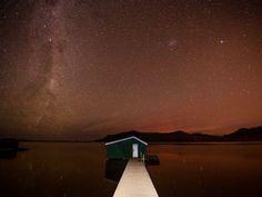 on the Otago Peninsula near Dunedin, New Zealand