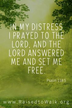 Bible Verses About Faith:In my distress I prayed to the LORD, and the LORD answered me and set me free. Psalms Verses, Psalms Quotes, Prayer Quotes, Bible Verses Quotes, Bible Scriptures, Faith Quotes, Wisdom Quotes, Bible Verses About Strength, Soli Deo Gloria