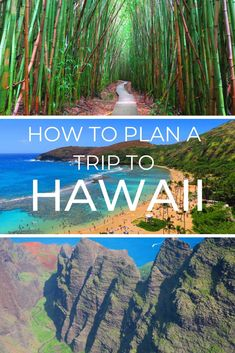 How to Plan a Trip to Hawaii Like a Pro Plan A, How To Plan, Beaches In The World, Hawaii Travel, Fiji, Trips, Paradise, To Go, Mexico