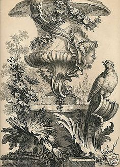 Pequegnot 1862 etching A Peyrotte French Louis XV rococo garden vase urn, parrot