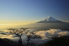 When I stand on the mountain pass, was a Fuji floating in the sea of ​​clouds there. Tree of a strange form of one stood as bonsai. Fuji Mountain, Lake Mountain, Mountain Pass, Beautiful Places To Visit, Cool Places To Visit, Monte Fuji Japon, Night Photography, Nature Photography, Tectonique Des Plaques