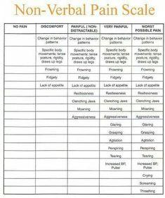 Non verbal pain scale Fibromyalgia Pain, Chronic Migraines, Chronic Illness, Chronic Pain, Endometriosis, Hiit, Cardio, Trigeminal Neuralgia, Ankylosing Spondylitis
