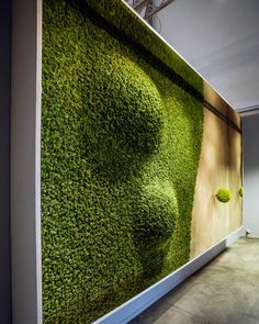 Green Dunes is a large SAG Smart Acoustic Green vegetal picture with an awesome 3D vegetal sculpture depicting dunes. Green Dunes, instead of sandy ones plus an iconic lonely green tree.