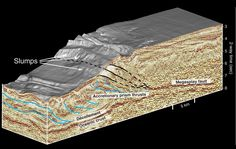 A 3D seismic image of Japan's southeastern margin